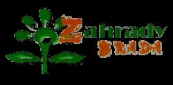 Jan Brada - Zahrady